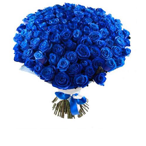 Картинки с синими розами, день рождения открытки